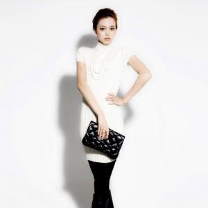 Lt-female-2011-spring-women-s-new-arrival-wool-long-design-turtleneck-short-sleeve-dress
