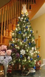 blue-silver-tree