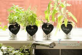 Indoor-Herb-Garden-with-Artificial-Lights