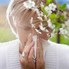 Useful tips to help you beat spring allergies