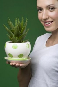 aloe-skin-care-the-benefits-that-you-should-know-21600321