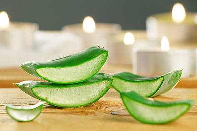 Soft, supple and moisturized skin - How to use aloe vera for skin care